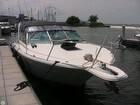 1994 Sea Ray 310 Amberjack - #3