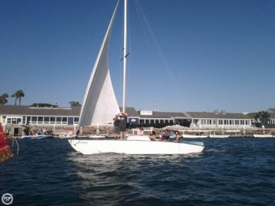 Catamaran custom built 28, 29', for sale - $30,000