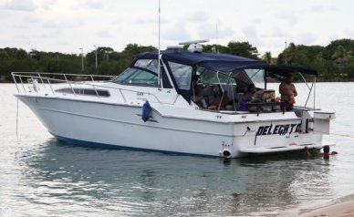 Sea Ray 460 Express Cruiser, 47', for sale - $30,000
