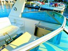 Sunday Cruise In A Sea Ray ~ Clear Views   Photo Debbie Ericson