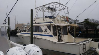 4294813C chris crafts for sale between $15k and $25k pop yachts 1986 Chris Craft 19 Cavalier at gsmx.co