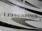 2015 Leprechaun 319DS - #3