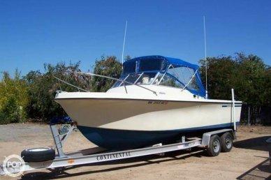 Skipjack Open Cruiser 24', 24', for sale - $23,500
