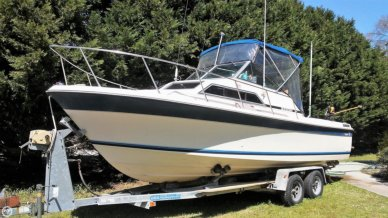Wellcraft 248 Sportsman, 24', for sale - $15,900