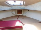 Skylight/ Harch V Berth