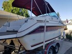 1991 Sea Ray 220 Sundancer - #3