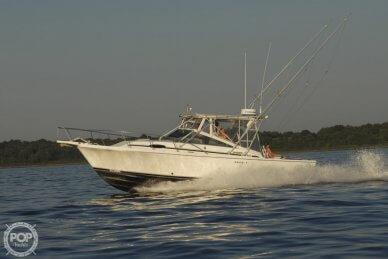 Blackfin Blackfin 29 Combi, 29, for sale - $38,900