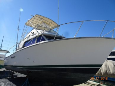Bertram 33 SF, 33, for sale