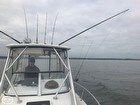 Striper Fishing Of Sandy Hook May 2019