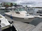 1991 Sea Ox Blue Water Pro 230C - #3