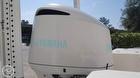 2019 Robalo 246 Cayman Skydeck - #6