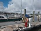 Starboard Front Deck