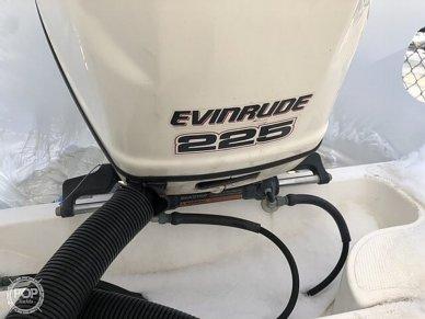 Evinrude 225