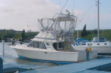 Blackfin 29 Flybridge Convertible, 32', for sale - $16,500