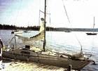 1974 Scampi Mark IV - #6