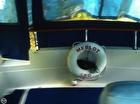 1988 Bayliner 2650 Ciera Sunbridge - #3